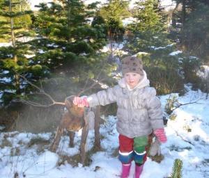 reindeer-walk